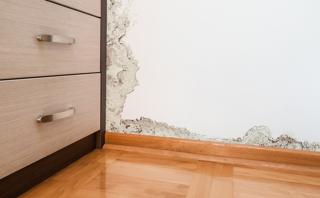 when can a homeowner 39 s insurance company deny a water damage claim lea. Black Bedroom Furniture Sets. Home Design Ideas